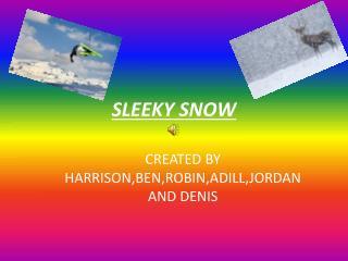SLEEKY SNOW