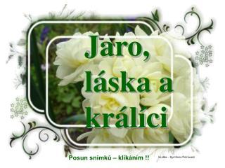 Jaro, l�ska a kr�l�ci