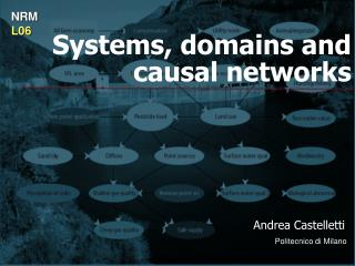 Systems, domains and causal networks