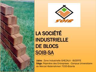 la société Industrielle  de blocs SOIB-SA
