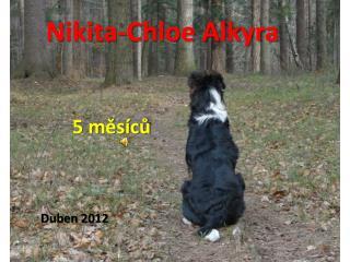 Nikita - Chloe Alkyra