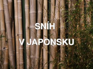 S NÍH V JAPONSKU