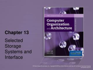 Chapter 13 Selected Storage Systems and Interface