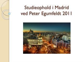 Studieophold i Madrid  ved Peter Egumfeldt 2011
