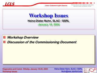 Workshop Issues Heinz-Dieter Nuhn, SLAC / SSRL January 19, 2004