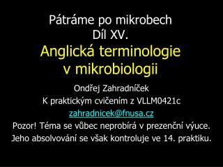 Pátráme po mikrobech Díl XV. Anglická terminologie vmikrobiologii