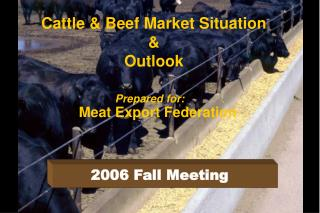 Cattle & Beef Market Situation & Outlook