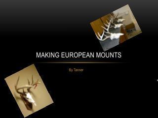 Making European Mounts