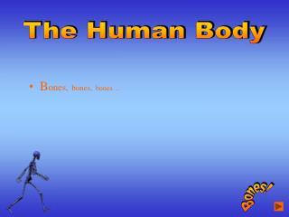 B ones, bones, bones…