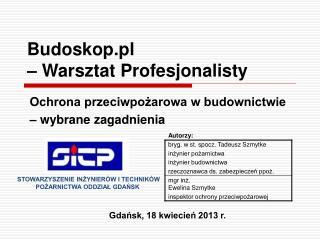 Budoskop.pl  – Warsztat Profesjonalisty