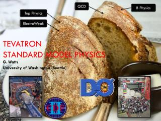 Tevatron Standard Model Physics