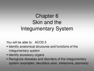 Chapter 6 Skin and the  Integumentary System
