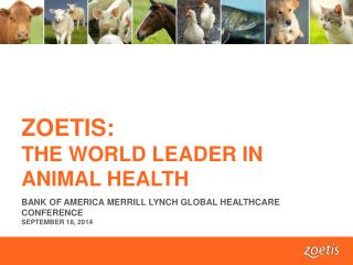 ZOETIS:  THE WORLD LEADER IN ANIMAL HEALTH