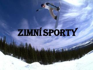 Zimn� sporty