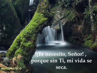 ¡Te necesito, Señor! , porque sin Ti, mi vida se seca.