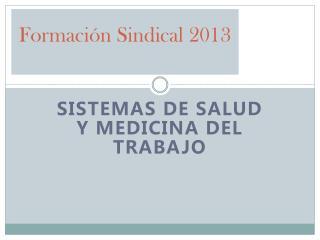 Formación Sindical 2013