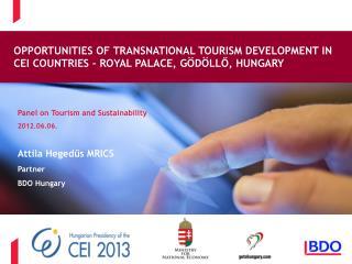 Panel on Tourism and Sustainability 2012.06.06. Attila Heged?s MRICS Partner BDO Hungary