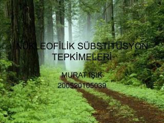 N KLEOFILIK S BSTIT SYON TEPKIMELERI