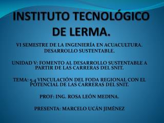 INSTITUTO TECNOLÓGICO DE LERMA.