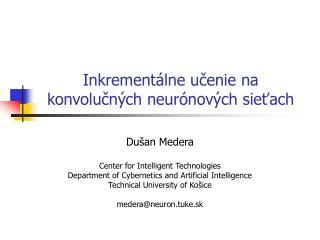 Inkrementálne učenie  na konvolu čných neurónových sieťach