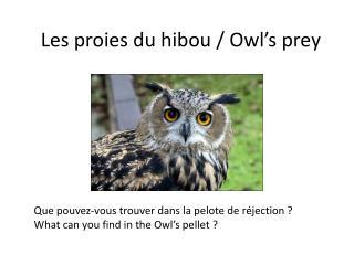Les proies du hibou / Owl's prey