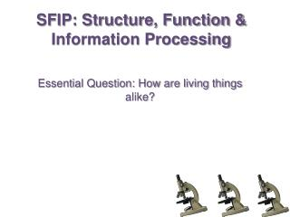 SFIP: Structure, Function & Information Processing