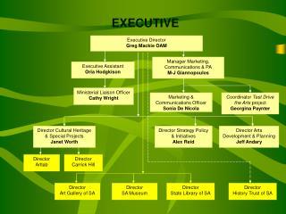 EXECUTIVE Director Arts Development  Planning