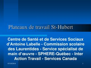 Plateaux de travail St-Hubert