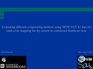 Evaluating different compositing methods using SPOT-VGT S1 data for