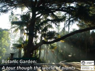 Botanic Garden: A tour though the world of plants