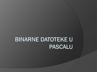 Binarne datoteke u Pascalu