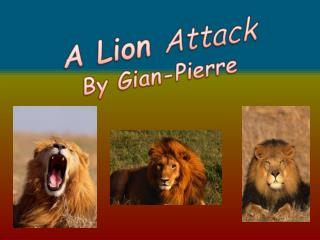 A Lion  Attack By  Gian -Pierre