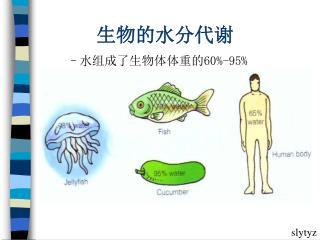 生物的水分代谢