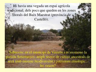 SOTERRANYES BAIXES VINAR�S (CS)-Espanya
