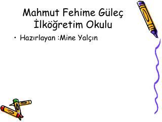 Mahmut Fehime Güleç İlköğretim Okulu
