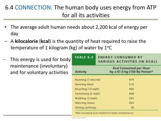 6.4  CONNECTION:  The human body uses energy from ATP for all its activities
