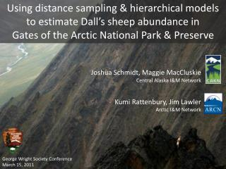 Using distance sampling & hierarchical models to estimate Dall's sheep abundance in