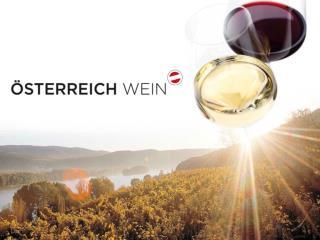 Eckdaten Österreich Wein