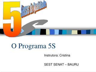 O Programa 5S