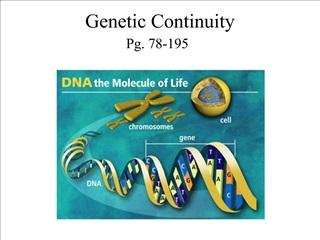 Genetic Continuity