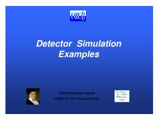 Detector  Simulation Examples