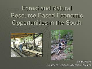 Forest and Natural Resource Based Economic Opportunities in the South