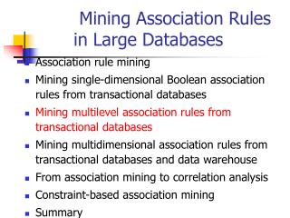 Mining Association Rules in Large Databases