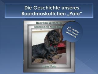 """Die Geschichte unseres Boardmaskottchen  """" Pato """""""