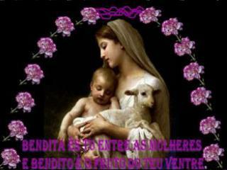 DOMINGO DA ASSUN��O DE MARIA,  M�E DO SENHOR 18 de agosto de 2013