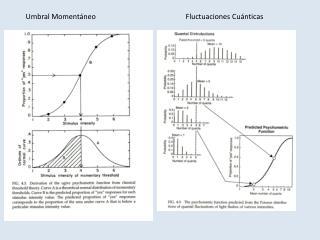 Umbral MomentáneoFluctuaciones Cuánticas