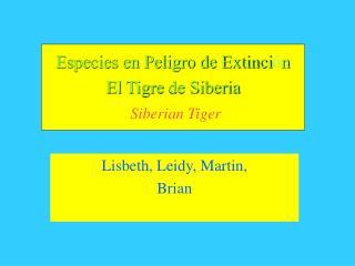 Especies en Peligro de Extinci ó n El  Tigre  de Siberia Siberian Tiger
