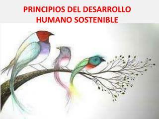 PRINCIPIOS DEL DESARROLLO HUMANO SOSTENIBLE