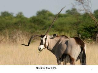 Namibia Tour 2006