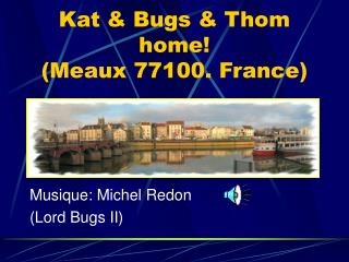 Kat & Bugs & Thom home! (Meaux 77100. France)